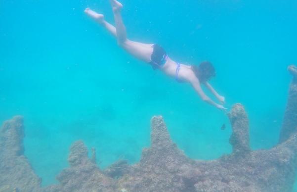 snorkelling malapascua